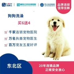 【新瑞鹏-东北区】狗狗洗澡买6送4次卡 5公斤内
