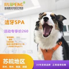 【苏皖阿闻】唯尔洁牙SPA口腔护理轻度套餐(苏州,常州,南通,扬镇) 犬-轻度-10kg以下