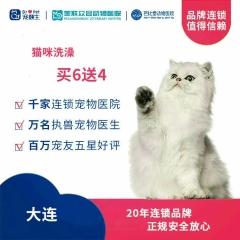 【新瑞鹏-东北区】大连-猫咪洗澡次卡6送4 短毛猫