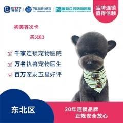 【新瑞鹏-东北区】狗美容次卡买5送3 犬:0-3kg