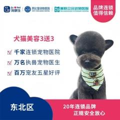 【新瑞鹏-东北区】犬猫美容造型买3送3 狗3-6kg